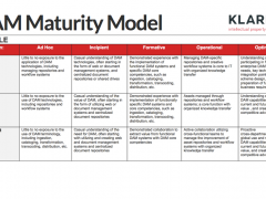 The Value of the DAM Maturity Model